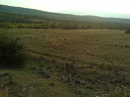 Αγροτεμάχια 9.500τ.μ. πρoς αγορά-Άγκιστρο » Κέντρο