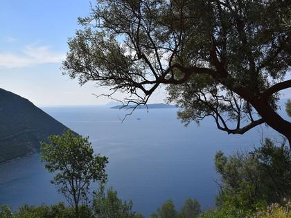 Αγροτεμάχια 4.724τ.μ. πρoς αγορά-Λευκάδα » Απολλώνιο