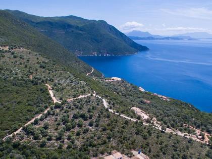 Αγροτεμάχια 10.028τ.μ. πρoς αγορά-Λευκάδα » Απολλώνιο