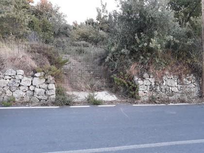 Αγροτεμάχια 2.300τ.μ. πρoς αγορά-Νικηφόρος φωκάς » Ατσιπόπουλο