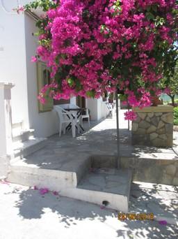 Studio / γκαρσονιέρα 40τ.μ. πρoς ενοικίαση-Πάτμος » Σκάλα