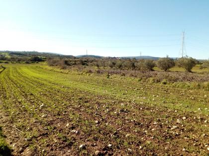 Αγροτεμάχια 5.100τ.μ. πρoς αγορά-Δερβενοχώρια