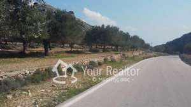 Οικόπεδο 2.000τ.μ. πρoς αγορά-Ρόδος » Αρχάγγελος