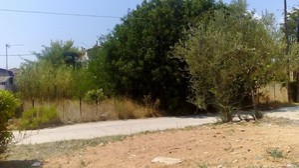 Οικόπεδο 267τ.μ. πρoς αγορά-Αρτέμιδα (λούτσα) » Κατασκηνώσεις