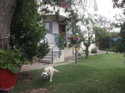 Studio / γκαρσονιέρα 25τ.μ. πρoς ενοικίαση-Ιερά πόλη μεσολογγίου » Μεσολόγγι