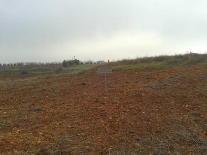 Αγροτεμάχια 5.625τ.μ. πρoς αγορά-Δράμα » Χωριστή