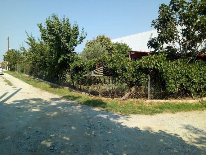 Αγροτεμάχια 1.000 τ.μ. πρoς ενοικίαση, Θεσσαλονίκη - Περιφ/Κοί Δήμοι, Πυλαία-thumb-1