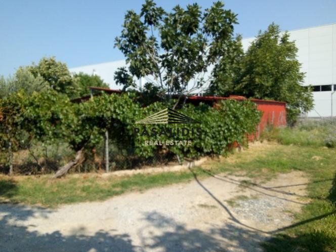 Αγροτεμάχια 1.000 τ.μ. πρoς ενοικίαση, Θεσσαλονίκη - Περιφ/Κοί Δήμοι, Πυλαία-thumb-2