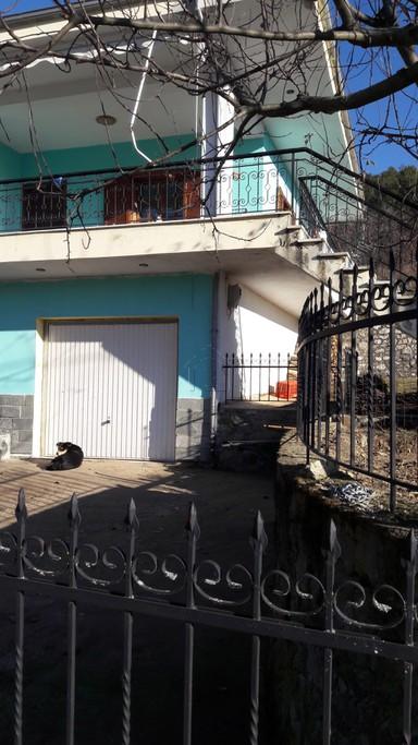 Μονοκατοικία 84τ.μ. πρoς αγορά-Πρέσπες » Ανταρτικό