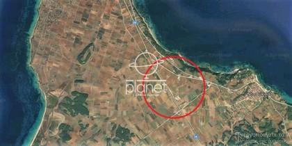 Αγροτεμάχια 5.000τ.μ. πρoς αγορά-Κασσάνδρα » Νέα φώκαια