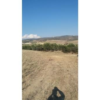 Αγροτεμάχια 17.000 τ.μ. πρoς ενοικίαση, Θεσσαλονίκη - Περιφ/Κοί Δήμοι, Θέρμη-thumb-2