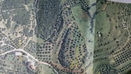 Αγροτεμάχια 22.000τ.μ. πρoς αγορά-Αμφιλοχία » Ανοιξιάτικο