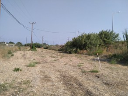 Οικόπεδο 4.500τ.μ. πρoς ενοικίαση-Ρόδος » Χώρα