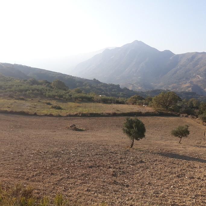 Άλλο 13.000τ.μ. πρoς ενοικίαση-Λάππα » Κέντρο