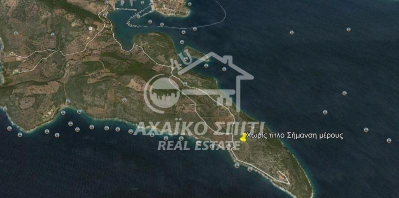 Οικόπεδο 4.800τ.μ. πρoς αγορά-Τολοφώνα » Τριζόνια