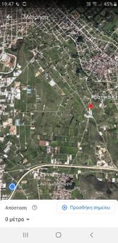 Αγροτεμάχια 24.000τ.μ. πρoς ενοικίαση-Ανατολή » Μπάφρα