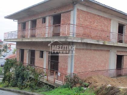 Μονοκατοικία 355τ.μ. πρoς αγορά-Βέροια » Τριπόταμος