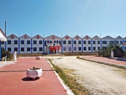 Επιχείρηση 3.000τ.μ. πρoς ενοικίαση-Άσσηρος » Κέντρο