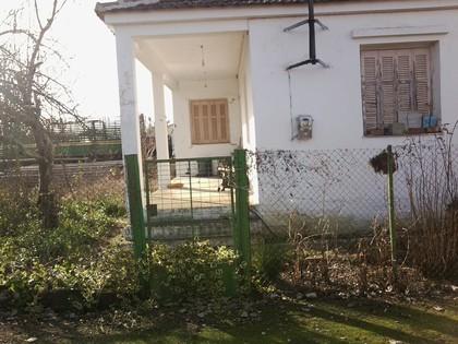 Μονοκατοικία 80τ.μ. πρoς αγορά-Ενιππέας » Ελληνικό