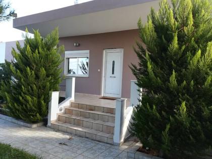 Μονοκατοικία 130τ.μ. πρoς ενοικίαση-Ακρωτήρι » Σταυρός