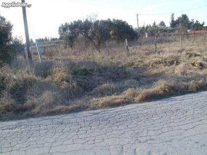 Οικόπεδο 300τ.μ. πρoς ενοικίαση-Θέρμη » Νέο ρύσιο
