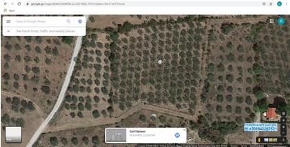 Αγροτεμάχια 4.315τ.μ. πρoς αγορά-Ανατολικος όλυμπος » Λεπτοκαρυά