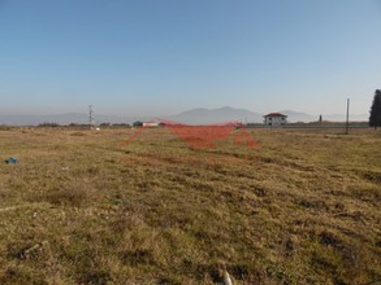 Αγροτεμάχια 2.150τ.μ. πρoς αγορά-Θερμαϊκός » Περαία