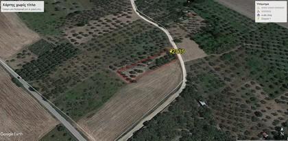Αγροτεμάχια 2.235τ.μ. πρoς αγορά-Ιστιαία » Άγιος παντελεήμων