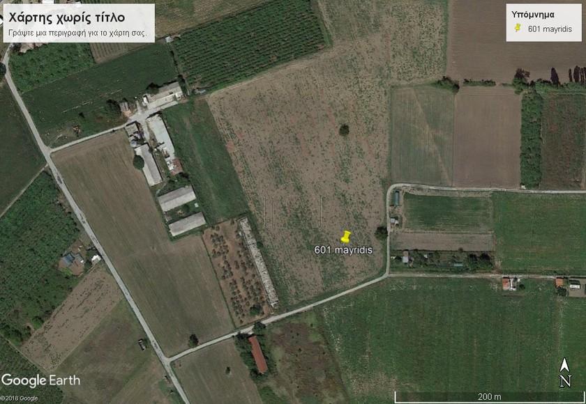 Αγροτεμάχια 7.854 τ.μ. πρoς αγορά, Ν. Πιερίας, Παραλία