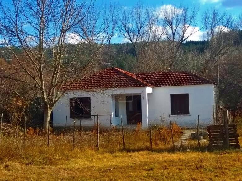Μονοκατοικία 170τ.μ. πρoς αγορά-Γρεβενά » Βάρος