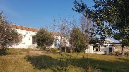 Μονοκατοικία 0τ.μ. πρoς αγορά-Βιστωνίδα » Σούνιο