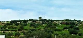 Αγροτεμάχια 890τ.μ. πρoς αγορά-Στύρα » Δήλησο