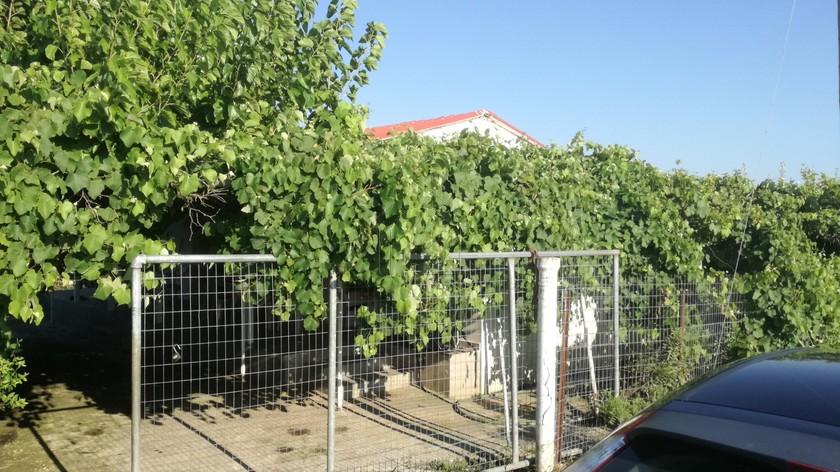 Μονοκατοικία 67τ.μ. πρoς αγορά-Γαστούνη » Κέντρο