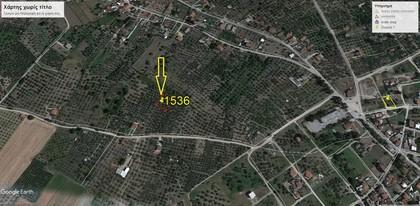 Αγροτεμάχια 1.536τ.μ. πρoς αγορά-Ιστιαία » Άγιος παντελεήμων