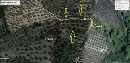 Αγροτεμάχια 2.260τ.μ. πρoς αγορά-Ιστιαία » Νέα σινασός