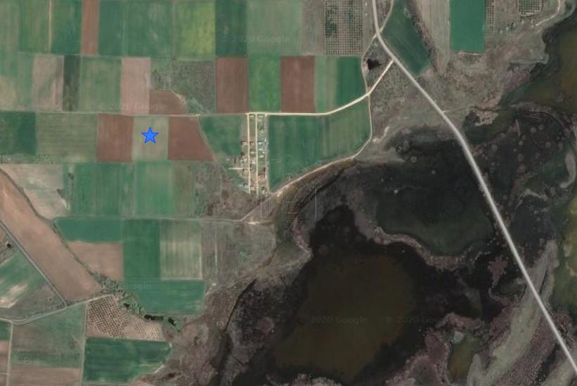 Αγροτεμάχια 10.055τ.μ. πρoς αγορά-Άβδηρα » Μάνδρα