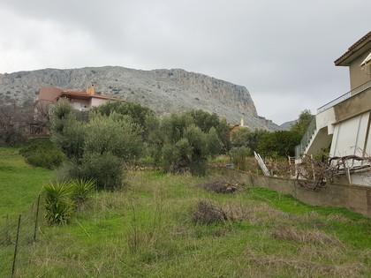 Οικόπεδο 301τ.μ. πρoς αγορά-Χίος » Πόλη χίου
