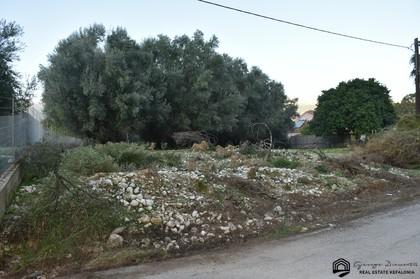 Αγροτεμάχια 7.615τ.μ. πρoς αγορά-Κεφαλονιά » Σάμη