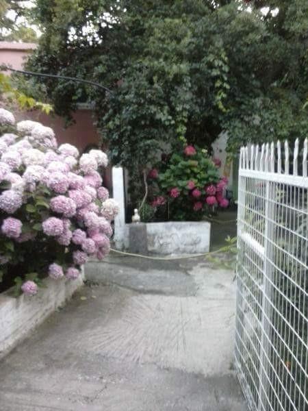 Μονοκατοικία 1.400τ.μ. πρoς αγορά-Σαμοθράκη » Χώρα
