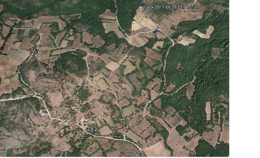 Αγροτεμάχια 16.750τ.μ. πρoς αγορά-Φέρες