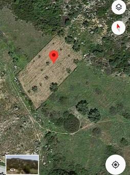 Αγροτεμάχια 3.800τ.μ. πρoς αγορά-Τορώνη » Κέντρο