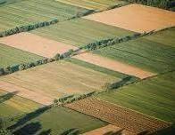 Αγροτεμάχια 50.000-100.000τ.μ. πρoς ζήτηση-Τρίπολη » Μονή επάνω χρέπας