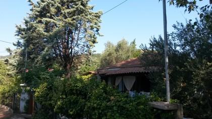 Μονοκατοικία 50τ.μ. πρoς αγορά-Σταγείρων - ακάνθου » Ολυμπιάδα