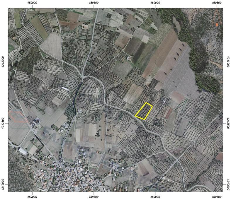 Αγροτεμάχια 10.000τ.μ. πρoς αγορά-Τανάγρα » Παναγιά