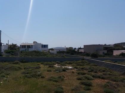 Οικόπεδο 400τ.μ. πρoς αγορά-Πάρος » Αλυκή