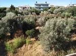 Οικόπεδο 1.200τ.μ. πρoς αγορά-Χίος » Ομηρούπολη