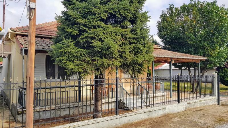 Μονοκατοικία 219τ.μ. πρoς αγορά-Κάμπος » Πτελοπούλα