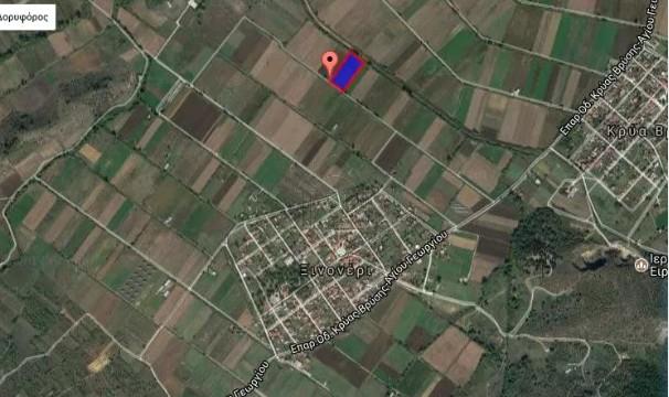 Αγροτεμάχια 10.000τ.μ. πρoς αγορά-Μητρόπολη » Ξινονέρι