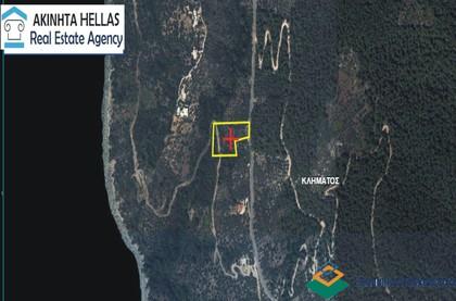 Αγροτεμάχια 4.366τ.μ. πρoς αγορά-Σκόπελος » Κλήμα