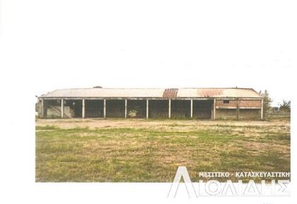 Βιομηχανικός χώρος 8.000τ.μ. πρoς ενοικίαση-Χαλκηδόνα